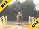 Available on DVD No.15<br>Jeroen Dubbeldam<br>Riding & Lecturing<br>Chopin Lasilla<br>by: Chapultepec out of ET<br>Selle Francaise<br>4 yrs. old Stallion<br>Training: Novice<br>Duration: 28 minutes