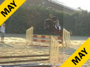 "Jeroen Dubbeldam<br>Riding & Lecturing<br>Rash ""R""<br>KWPN<br>7 yrs. old Stallion<br>Training: International Level<br>Duration: 34 minutes"