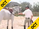 Ian Millar<br>Lecturing & Lungeing<br>Working A Horse<br>From the Ground<br>Fancy Hill<br>10 yrs. old Mare<br>Duration: 40 minutes