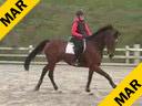 Alois Pollmann-Schweckhorst<br>Assisting<br> Katrin Mueller<br> Dorina<br> Rheinlander<br> 8 yrs. old Mare<br> Training: 1.25 meters<br> Duration: 27 minutes