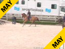 Rodrigo PessoaDay 2 Riding & Lecturing Road Runner 9 yrs. old Training; 1.45m Duration: 27 minutes