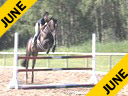Gail Greenough<br> Assisting<br> Asia Brown<br> Parana<br> Hanoverian<br> 10 yrs. old Gelding<br> Training: 1.20 meters<br> Owner: Asia Brown<br> Duration: 27 minutes