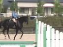 Louise Serio Riding & Lecturing Liroto 6 yrs. old Gelding KWPN Duration: 29 minutes