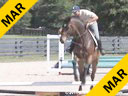 Aaron Vale<br> Riding & Lecturing<br> Fantastico<br> Canadian Sport Horse<br> 8 yrs. old Gelding<br> Training: 1.35 meters<br> Duration: 16 minutes