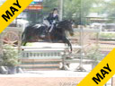 Sandy Ferrell<br>Assisting<br>Kelly Arani<br>Stars Go Blue<br>Warmblood<br>11 yrs. old Gelding<br>Training: Large Junior Hunter<br>Owner: Maragot Bay Farm<br>Duration: 17 minutes