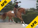 Scott Stewart<br>Riding & Lecturing<br>Crown Point<br>German Warmblood<br>3 yrs. old Gelding<br>Training: Pre Green<br>Duration: 18 minutes