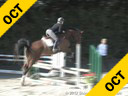 Judy Wise<br> Assisting<br> Samantha Buirs<br> Socratis<br> KWPN<br> 5 yrs. old Gelding<br> Training: Young Jumpers<br> Duration: 25 minutes