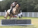 Marcia Kulak Riding & Lecturing Silvio Hanoverian 13 yrs. old Gelding Training:Preliminary Level Owner: Natalie Miller Epstein Duration: 38 minutes
